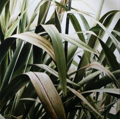 Harakeke Leaf Cascade