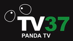 2019 Silver Sponsor Panda Tv