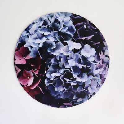 Summer Hydrangeas
