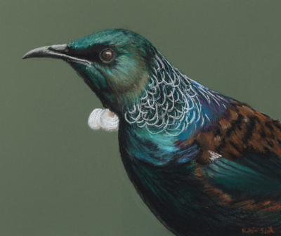 Tui Song