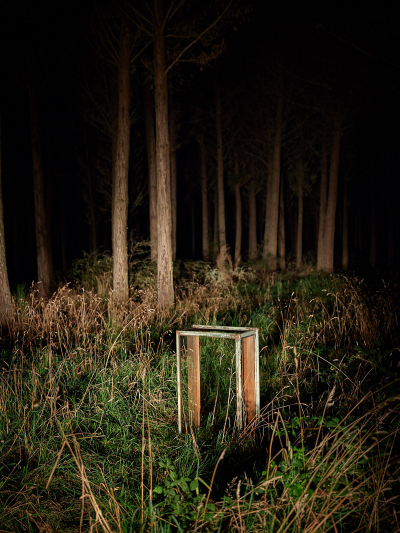 Dr Ward's Case #12, Kaimanawa Forest, Night