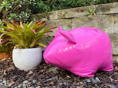 Paradise Piggies - Pink