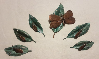 Insects on Leaves